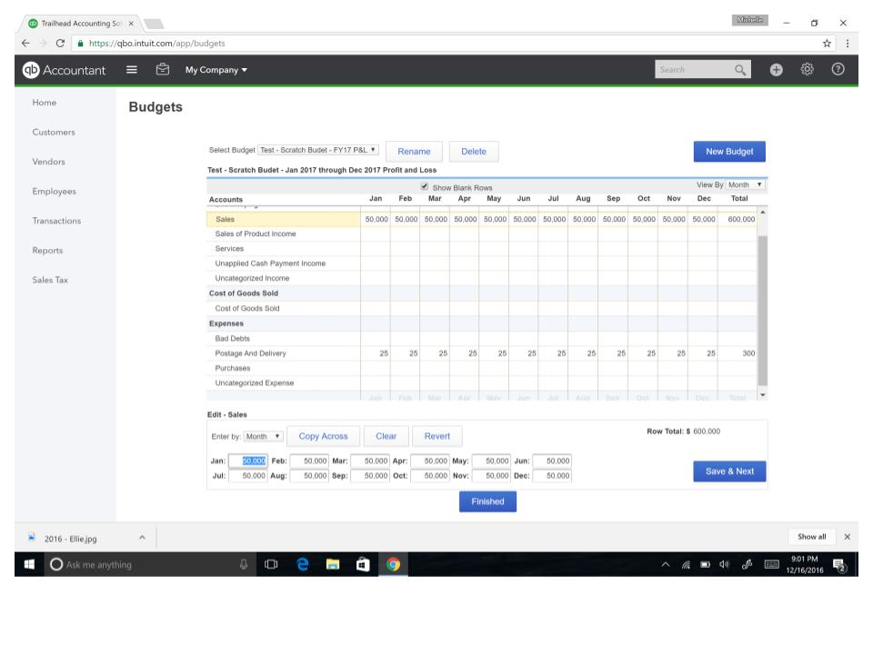 QuickBooks Online Budget Screen Shot