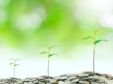 The Hidden Costs Behind Business Growth