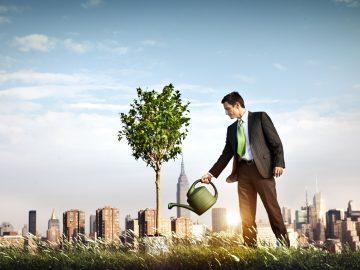 7 Strategies to Improve Small Business Profitability